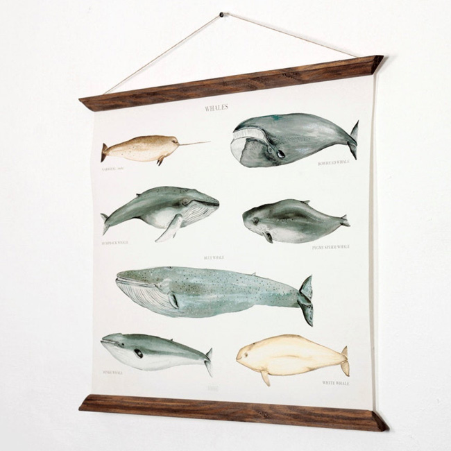 etsy arminho affiche baleine