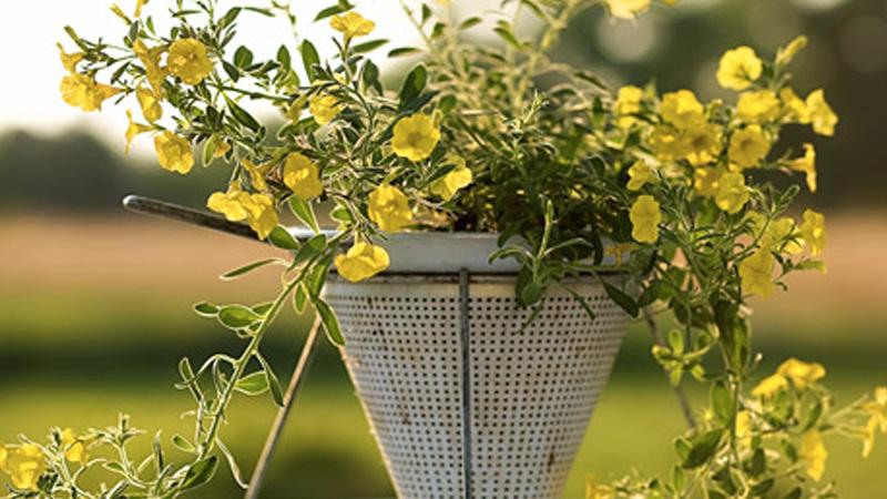 jardiniere chinois passoire diy