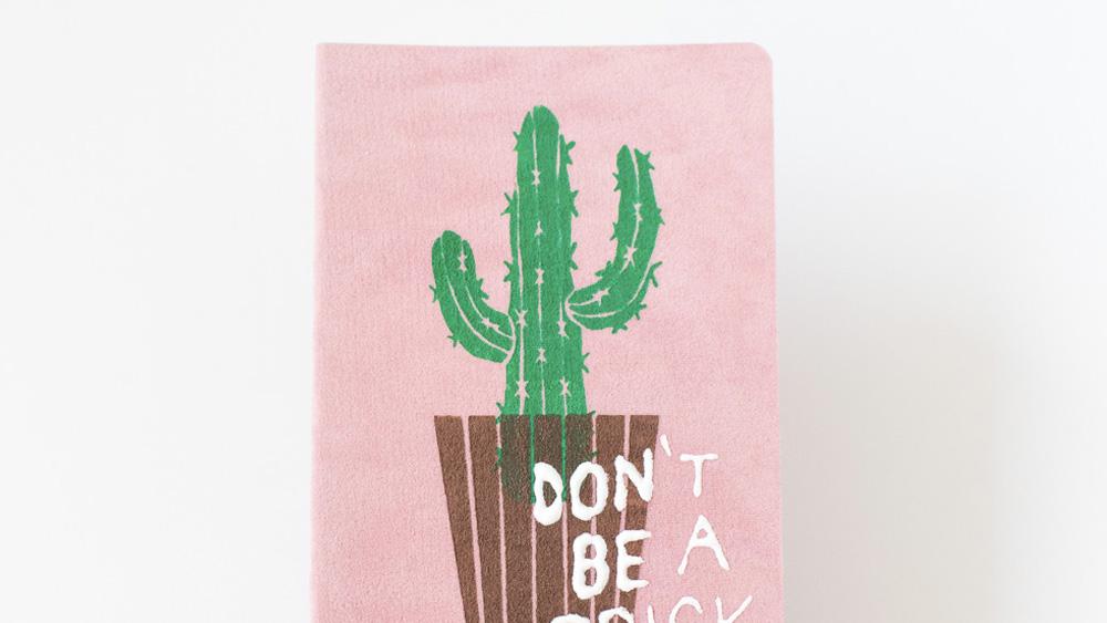 carnet diy cactus
