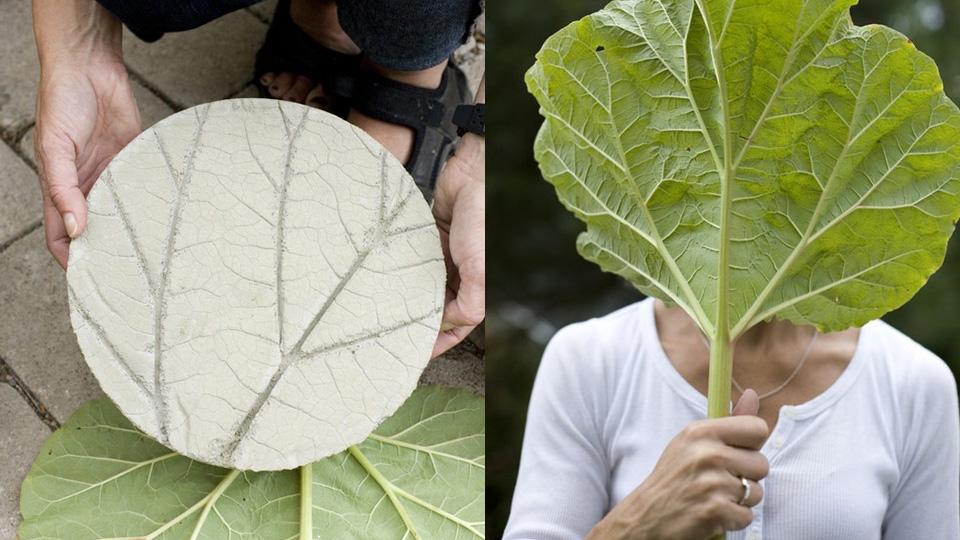 dessous de plat végétal béton diy