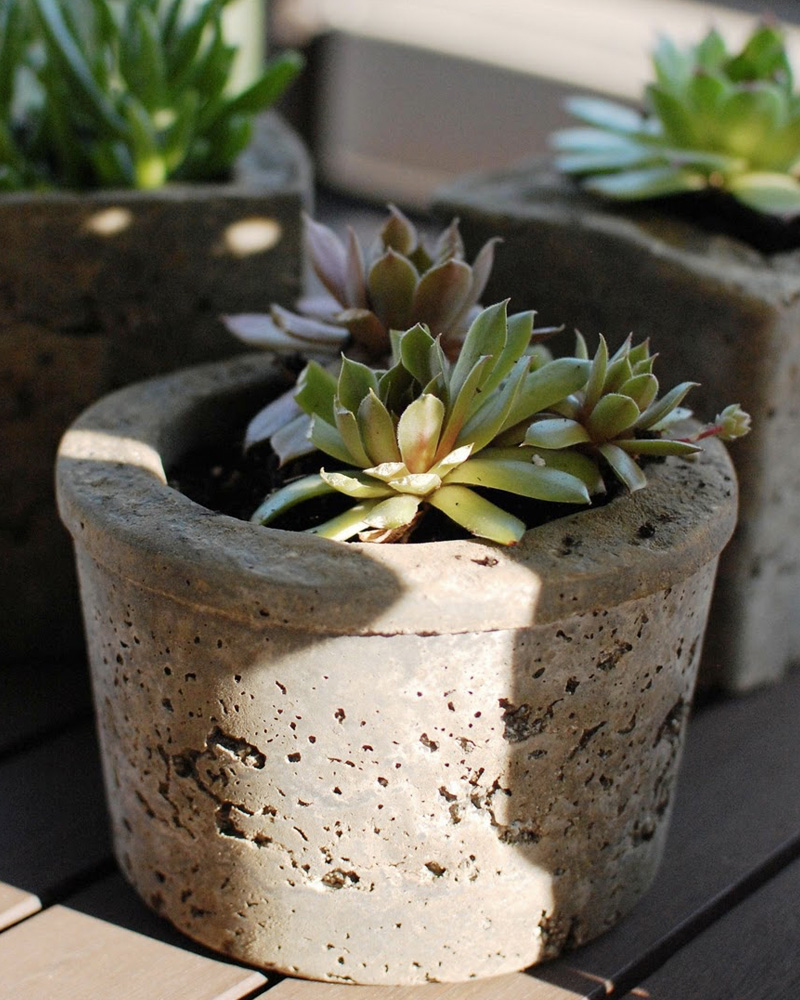 diy pot beton plante