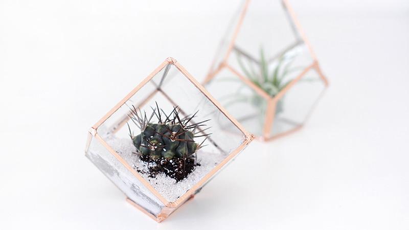 mini terrarium cuivre diy
