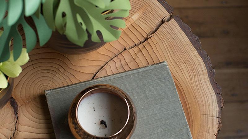 table basse naturelle bois diy