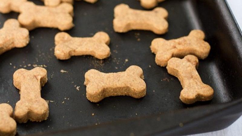 biscuit chien diy recette