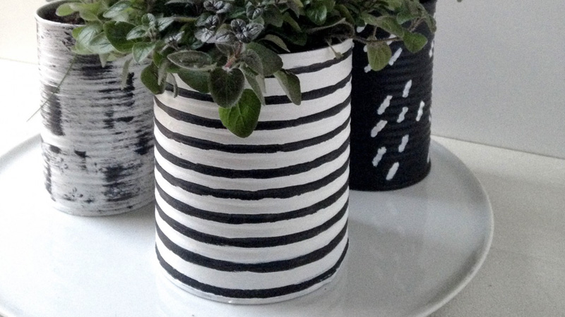 pot diy plante aromatique