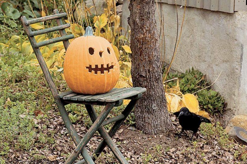 Deco halloween shake my blog for Jardin halloween