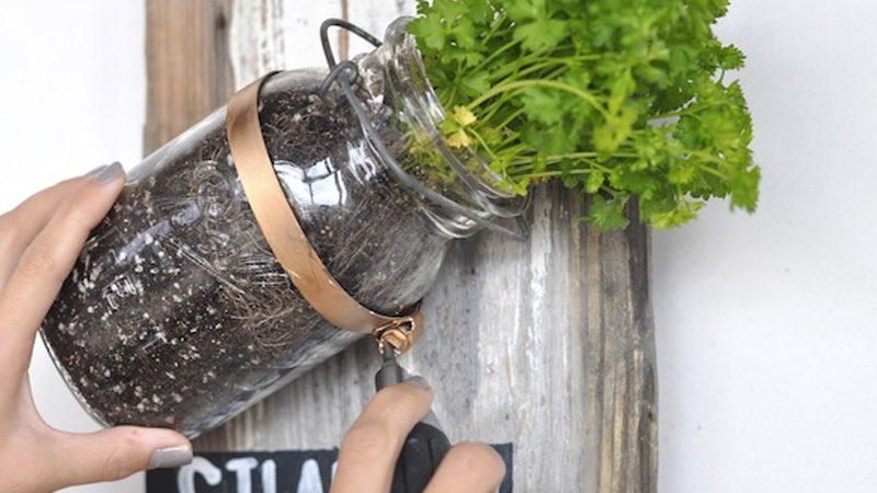 jardin vertical bocal DIY