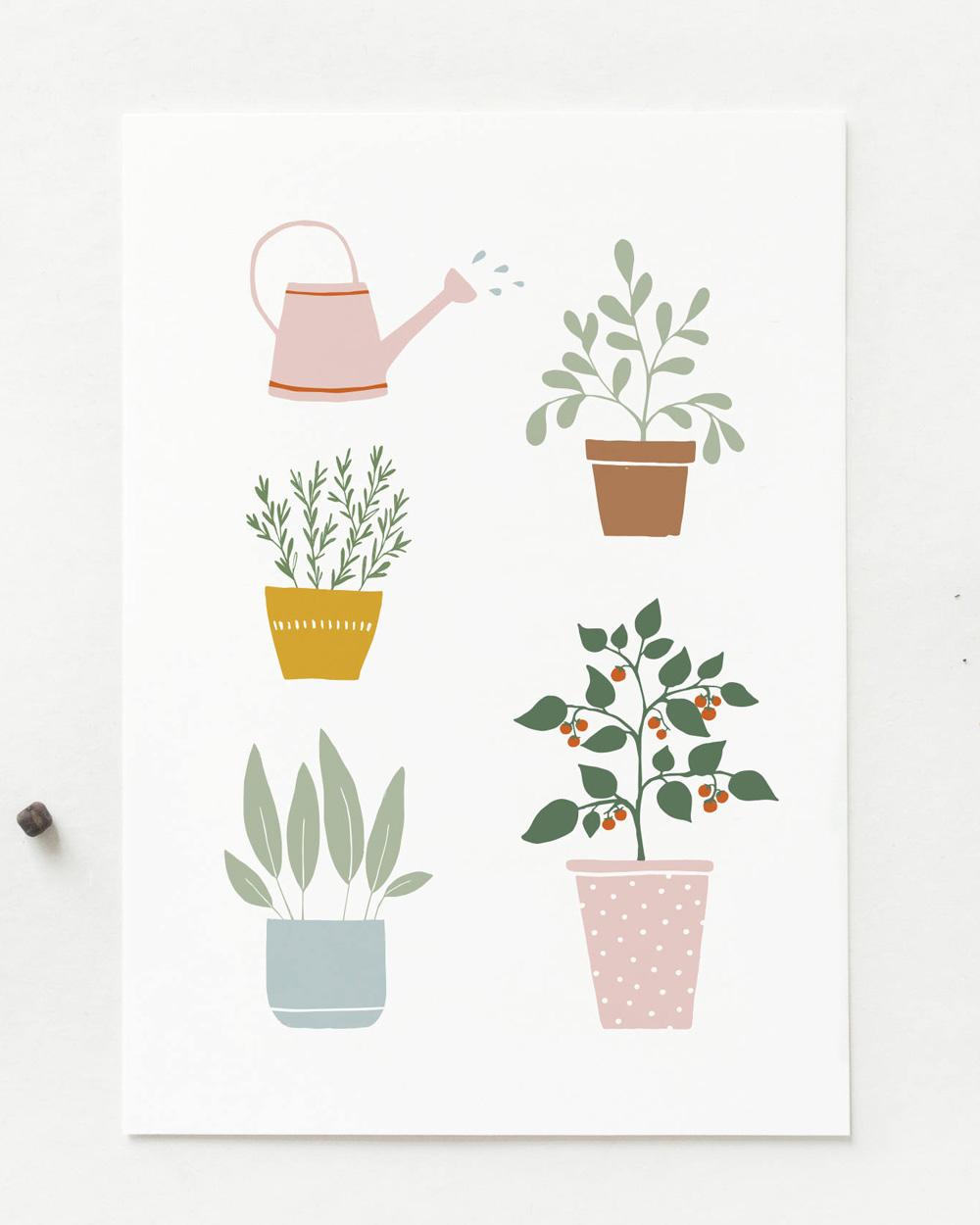 carte postale illustration végétale