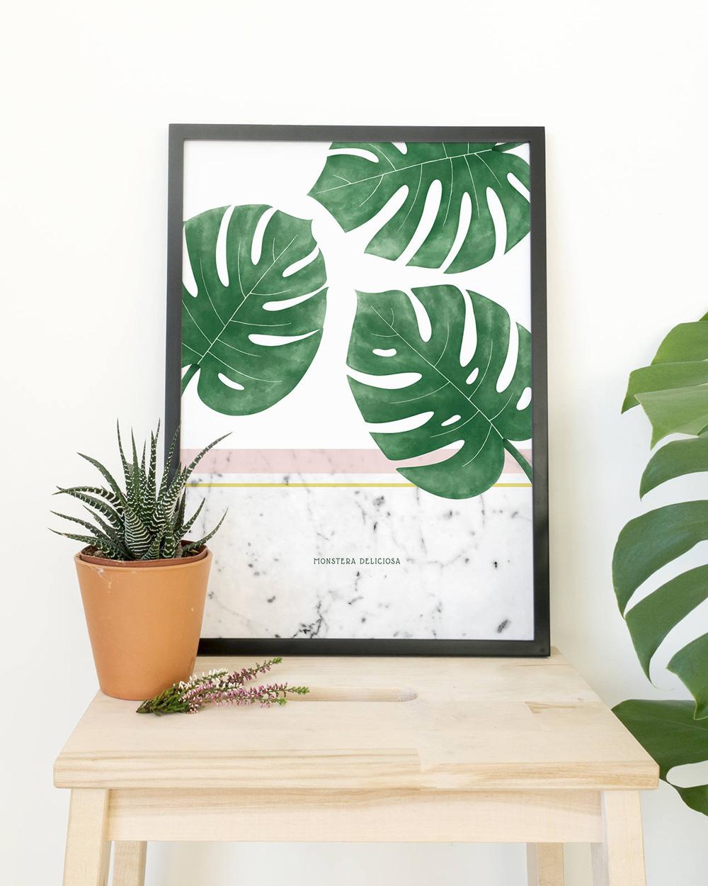 affiche végétale monstera