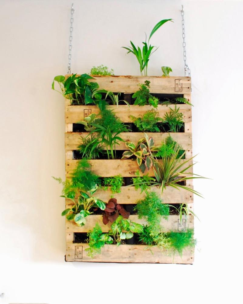 Un jardin vertical diy avec une palette shake my blog - Jardin vertical palette ...