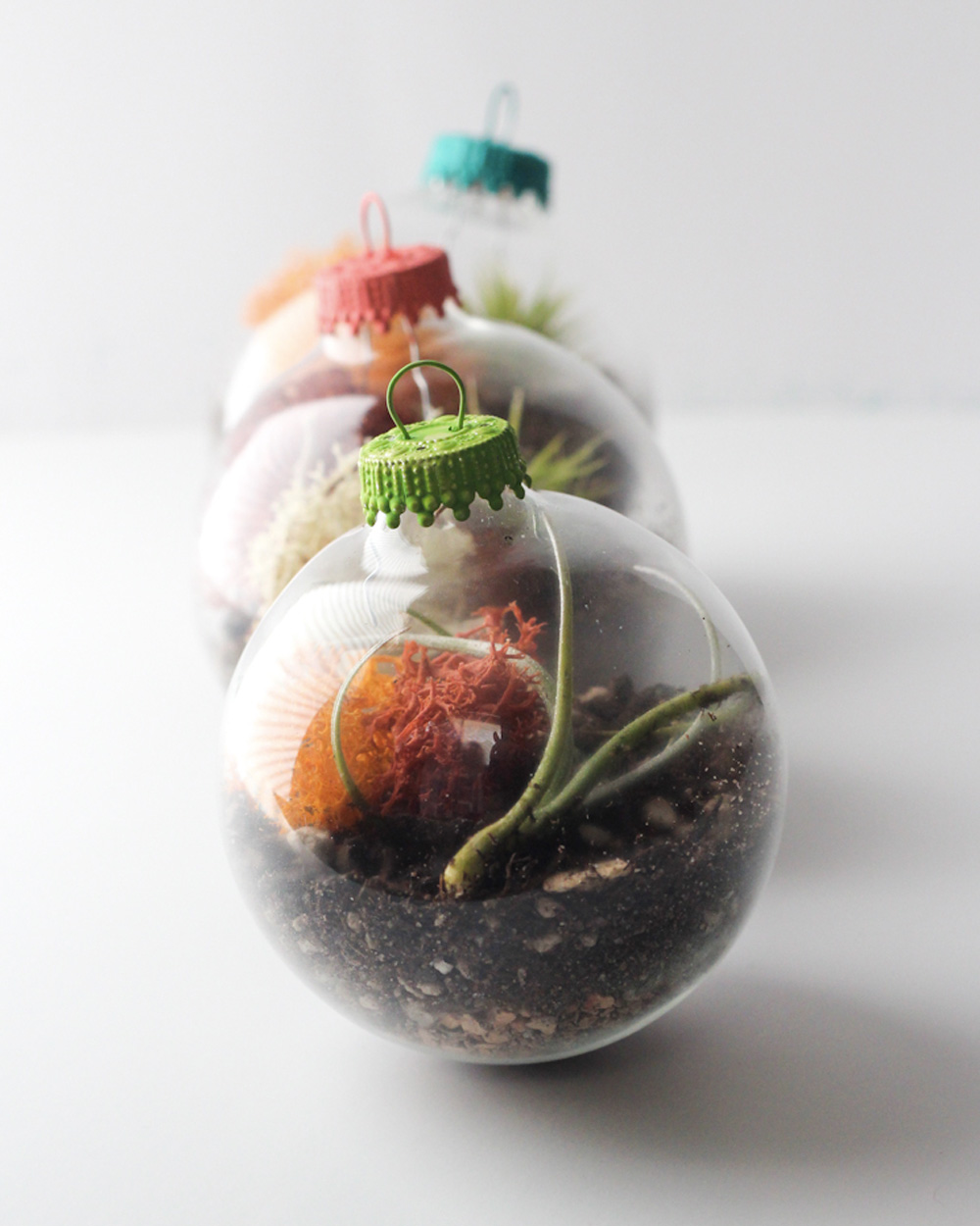 un terrarium boule de no l diy shake my blog. Black Bedroom Furniture Sets. Home Design Ideas