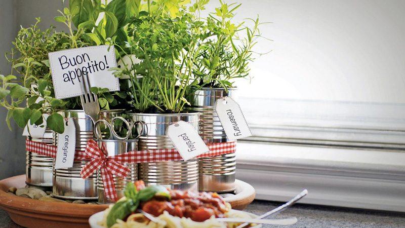 jardin aromatique cuisine diy