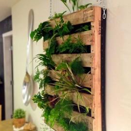 Shake my blog un jardin vertical avec une palette - Jardin vertical palette ...