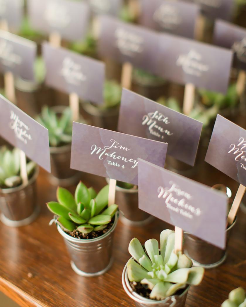 cadeau invite diy mariage plantes