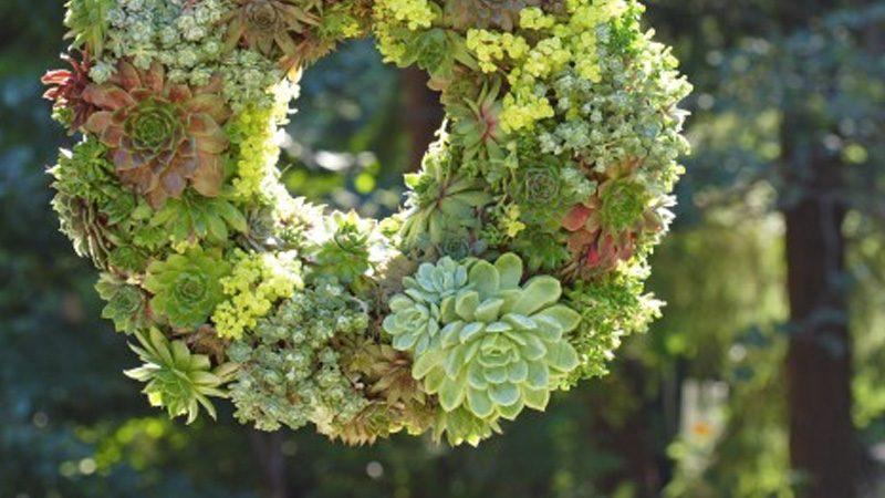 couronne végétale diy