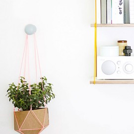 shake my blog diy plante. Black Bedroom Furniture Sets. Home Design Ideas