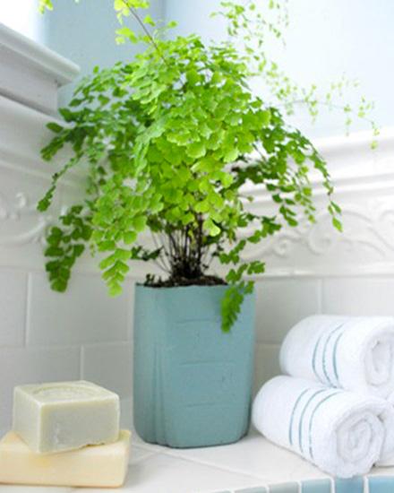 shake my blog fabriquer un pot en ciment pour des plantes. Black Bedroom Furniture Sets. Home Design Ideas