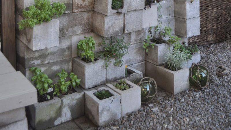 mur végétal diy parpaing