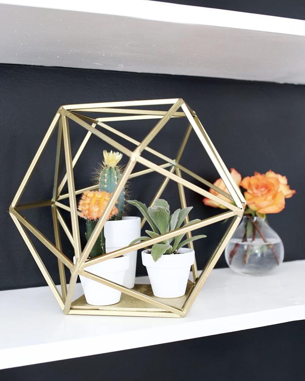 diy jardin intérieur géométrique