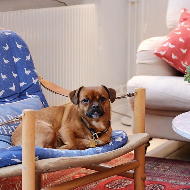 deco scandinave boheme vintage fauteuil bleu