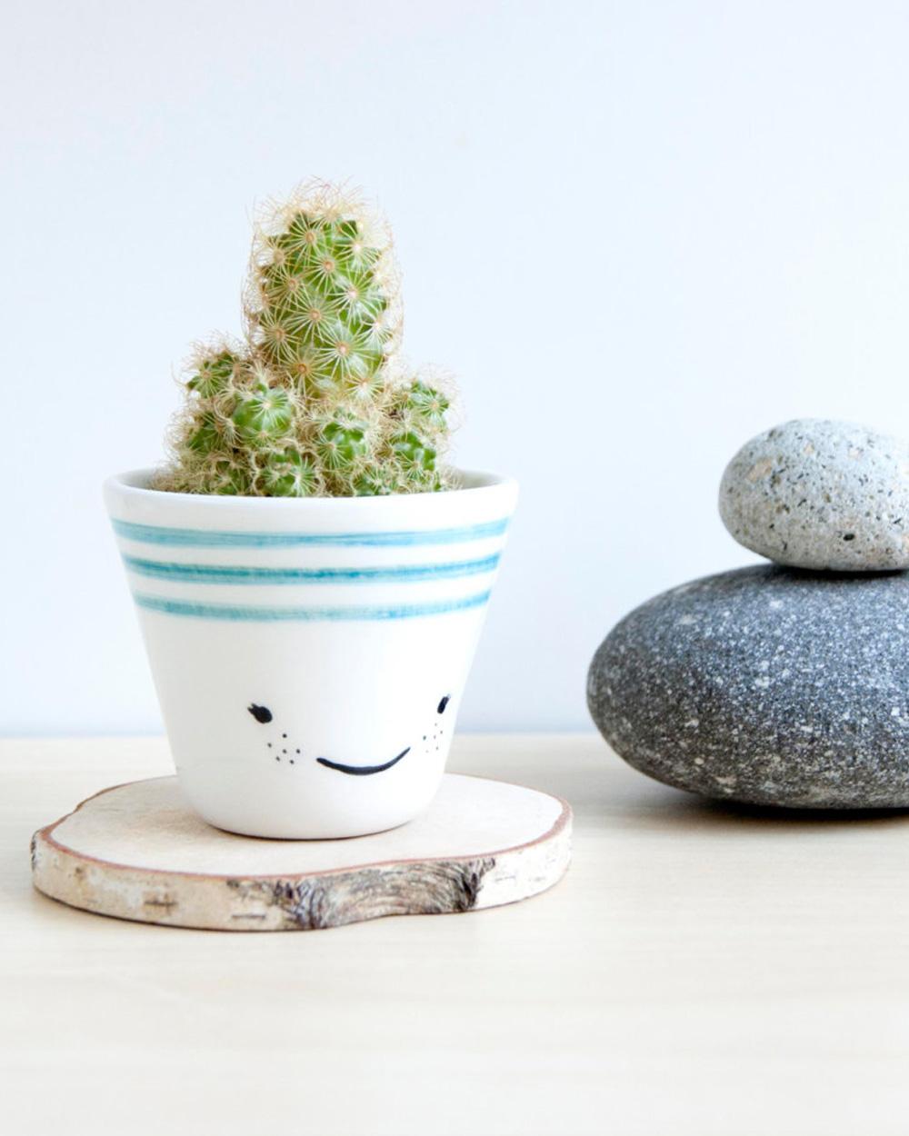pot cactus céramique noe marin