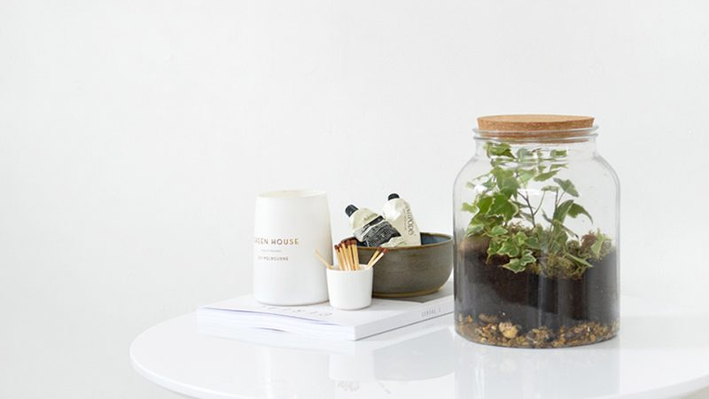 comment cr er un terrarium diy shake my blog. Black Bedroom Furniture Sets. Home Design Ideas