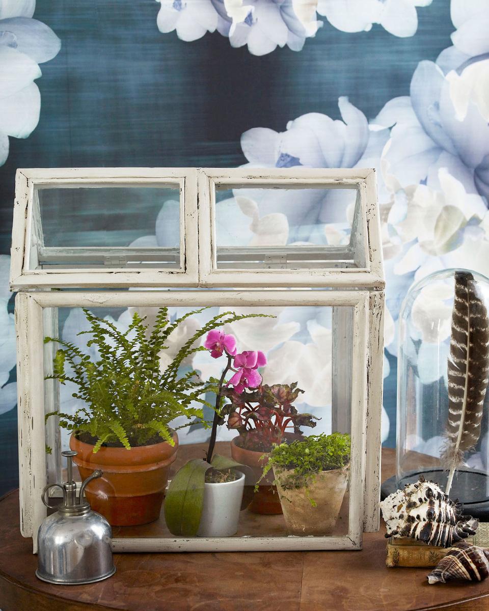 diy terrarium cadre