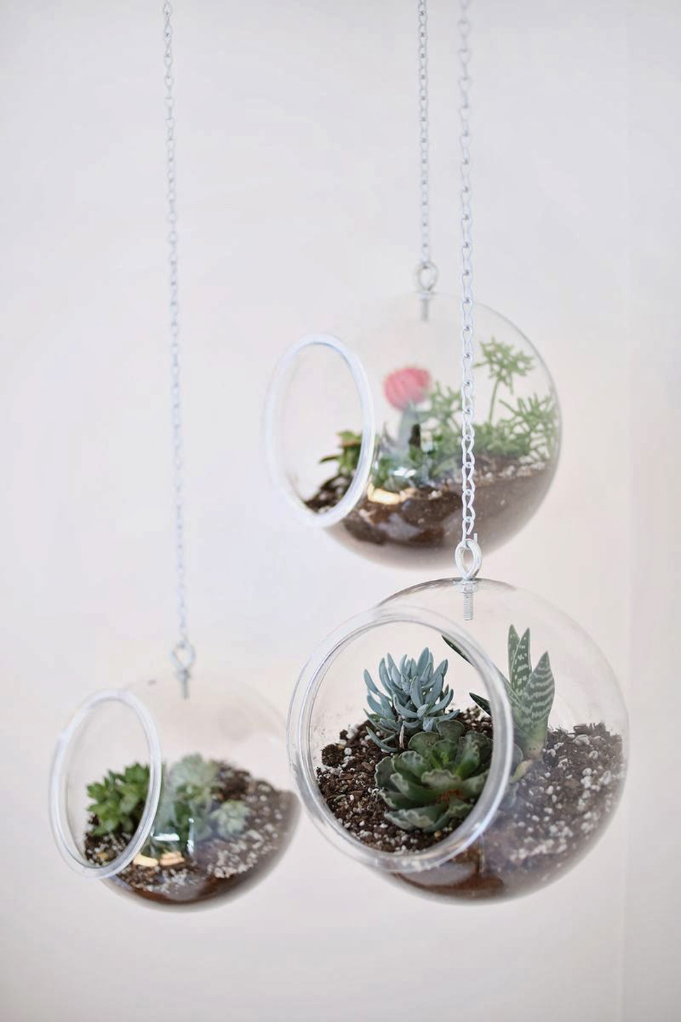8 id es diy pour cr er un terrarium shake my blog. Black Bedroom Furniture Sets. Home Design Ideas