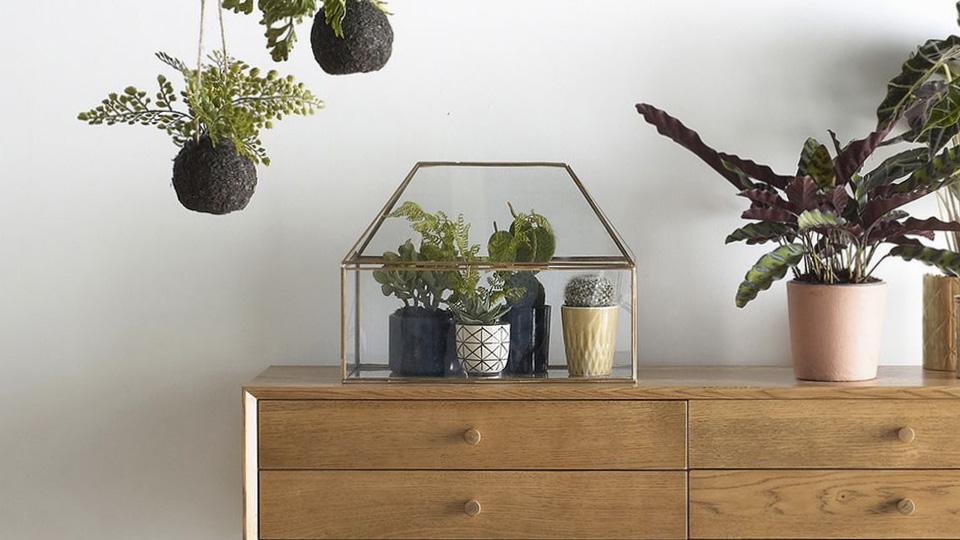 sélection deco avril terrarium