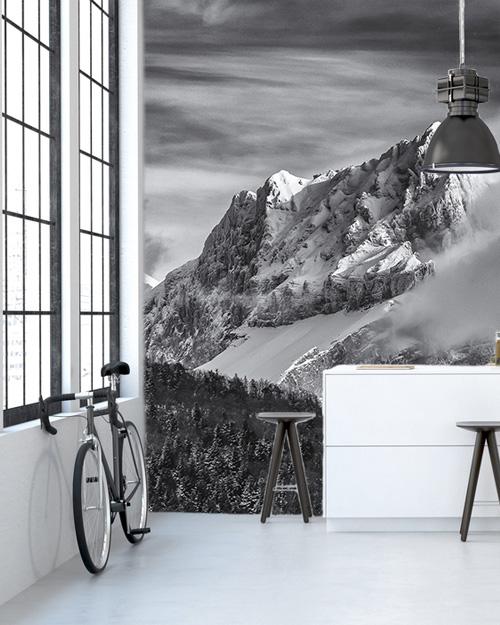 deco mur noir blanc papier peint