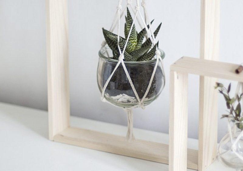 suspension plante diy