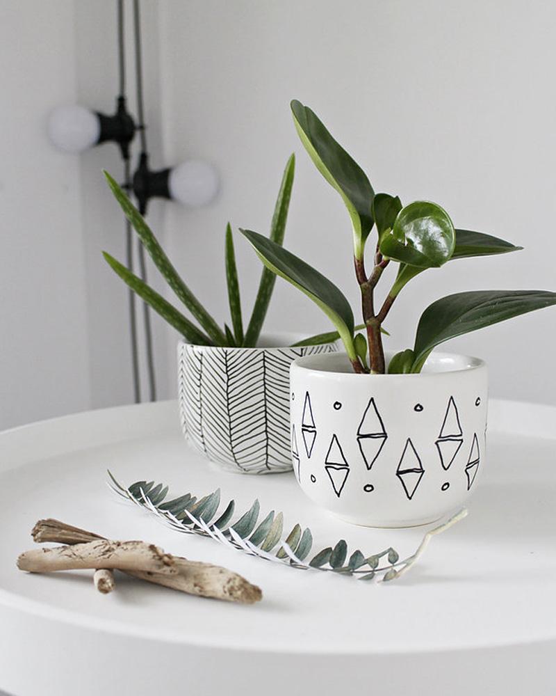accessoire deco plante pot diy