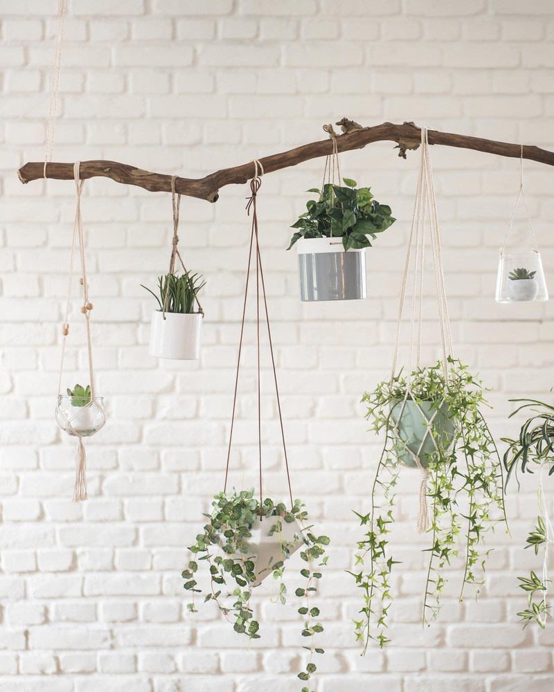 des accessoires d co pour vos plantes shake my blog. Black Bedroom Furniture Sets. Home Design Ideas