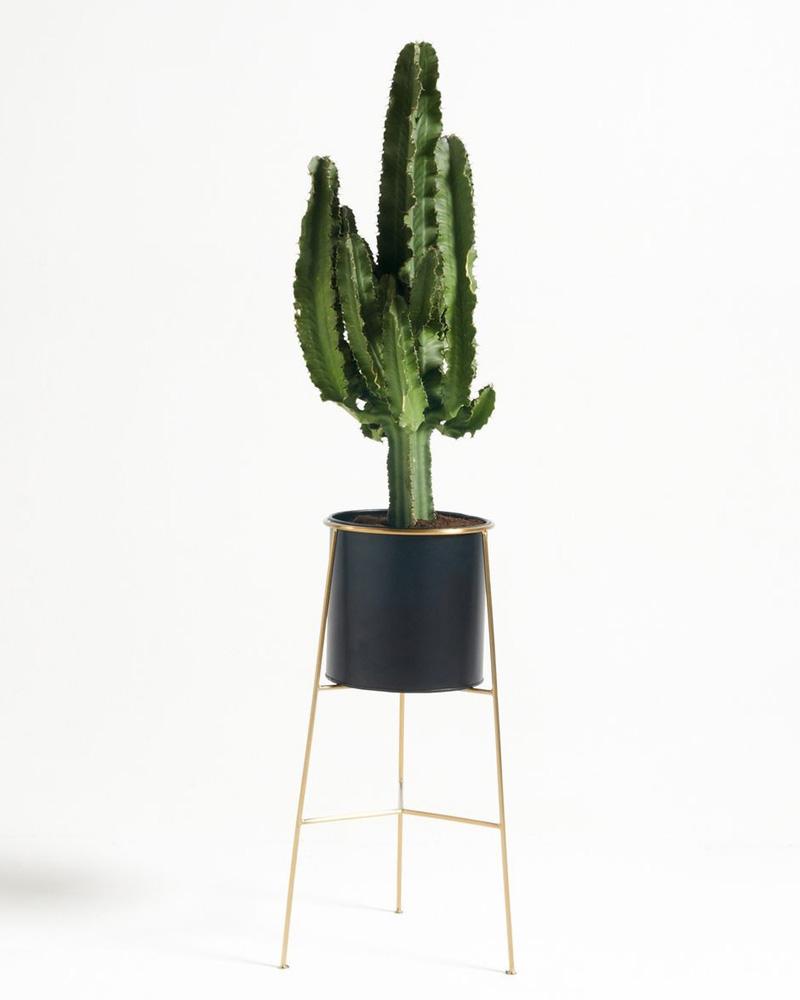 accessoire deco plante pot support