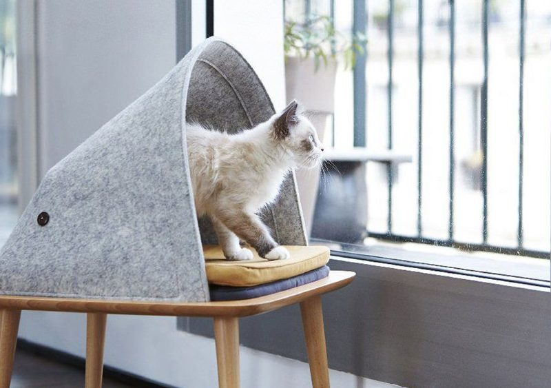 boutique magasin deco animaux