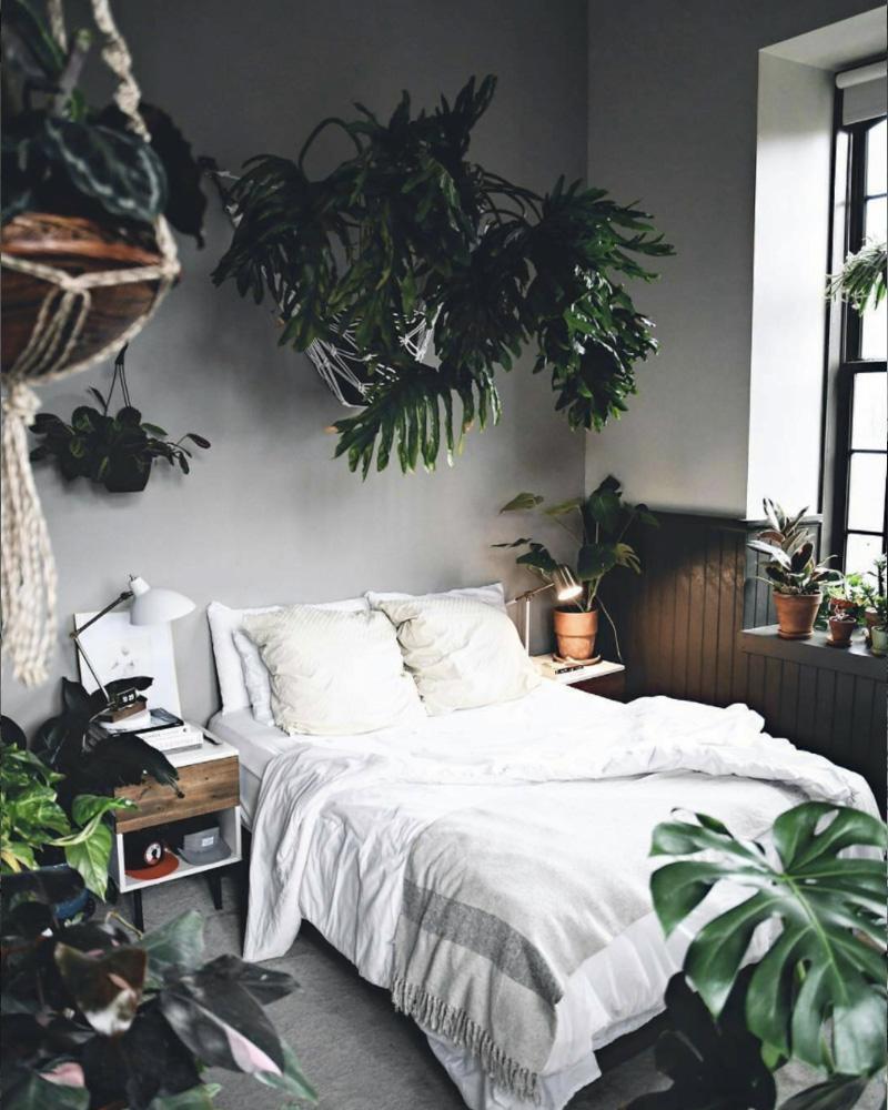 deco jungle urbaine chambre
