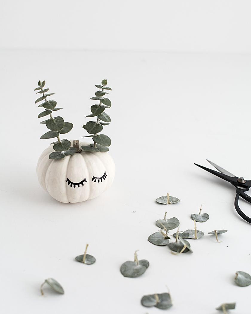 diy citrouille halloween végétale