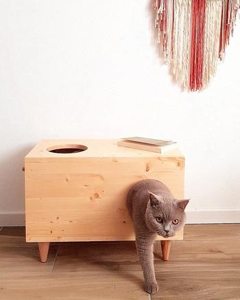 cabane chat bois