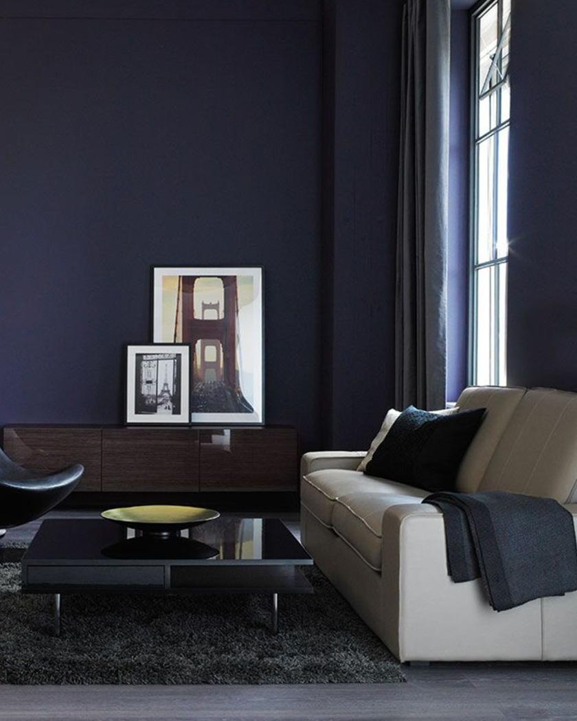 Salon Murs Bleu Foncé Et Canapé Beige