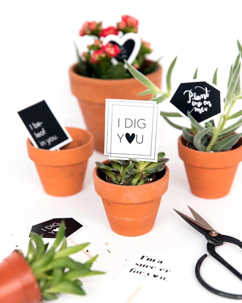 diy a imprimer saint valentin étiquette plante