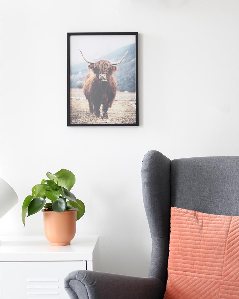 affiche posterstore vache
