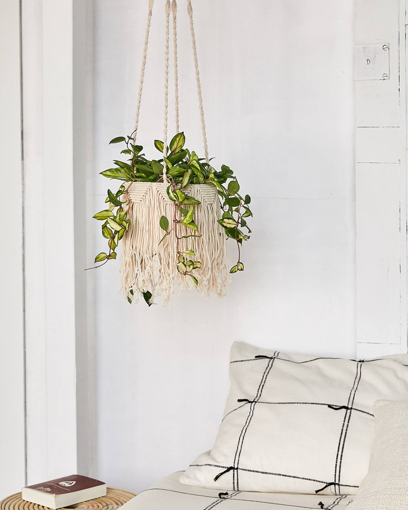 deco macrame suspension plante