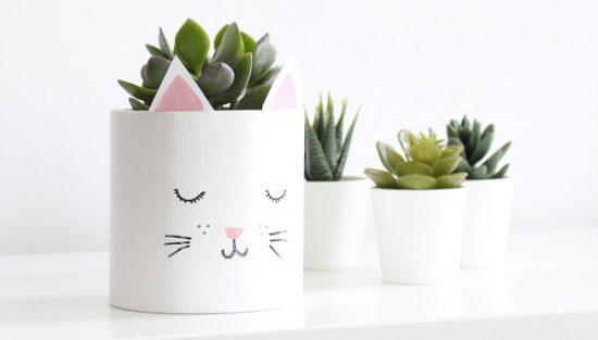 diy pot chat plante