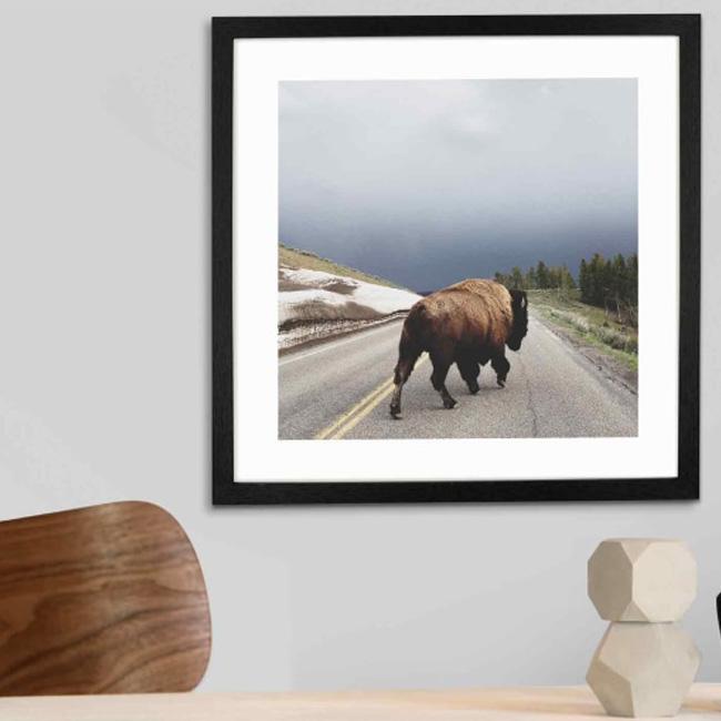 deco cadeau photo affiche bison