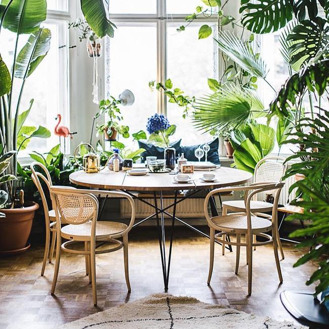 deco tropicale séjour salle à manger vintage