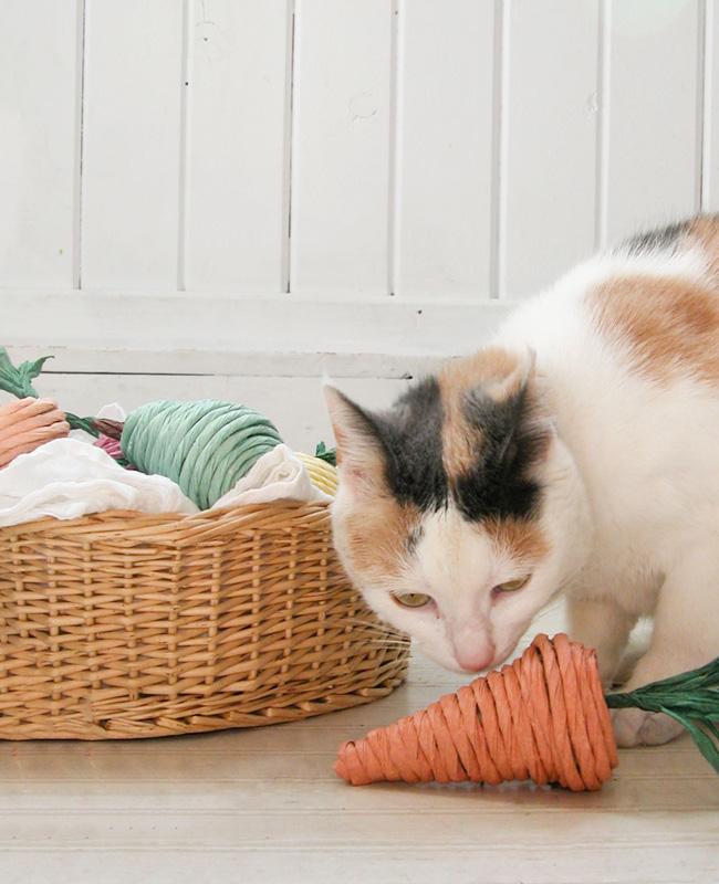 jouet chat diy légume papier
