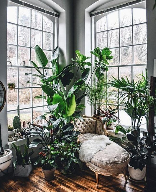 deco appartement urban jungle banquette