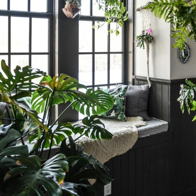 deco appartement urban jungle lit jour