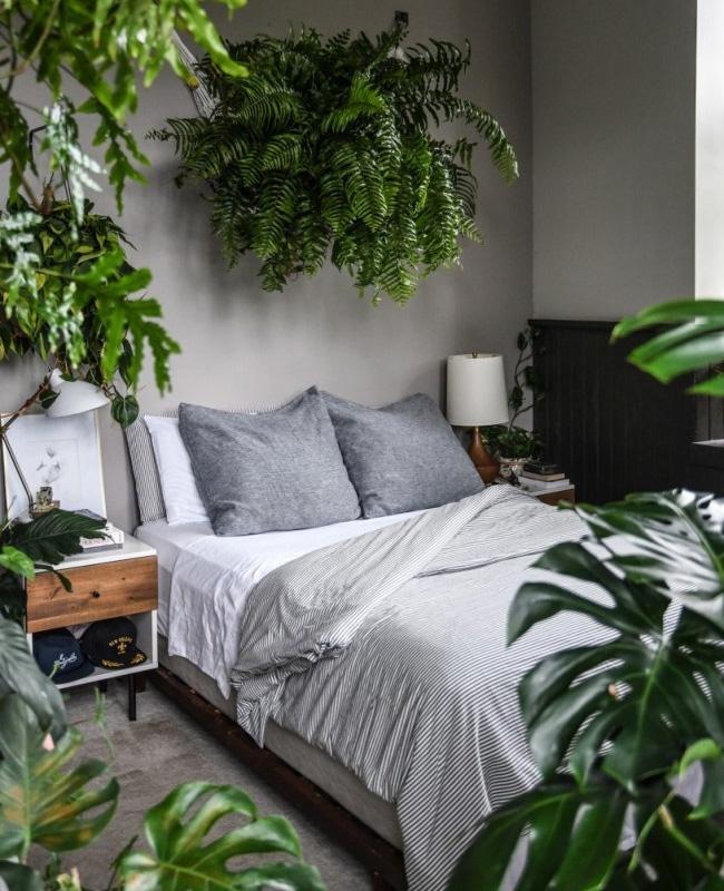 deco appartement urban jungle chambre