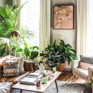 tendance déco urban jungle